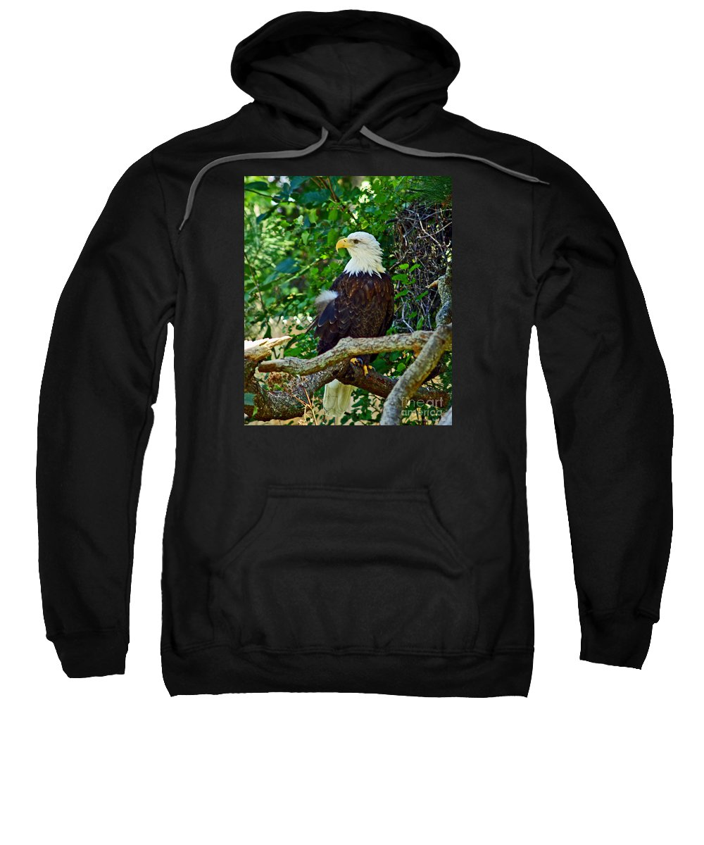 Fine Art Photography Sweatshirt featuring the photograph Let Freedom Ring by Patricia Griffin Brett