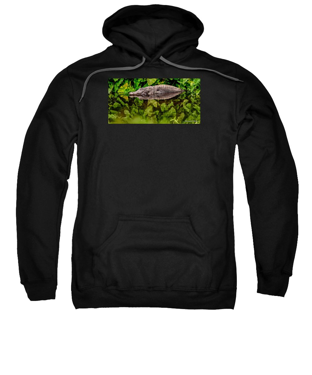 Alligator Sweatshirt featuring the photograph Let Sleeping Gators Lie by Christopher Holmes