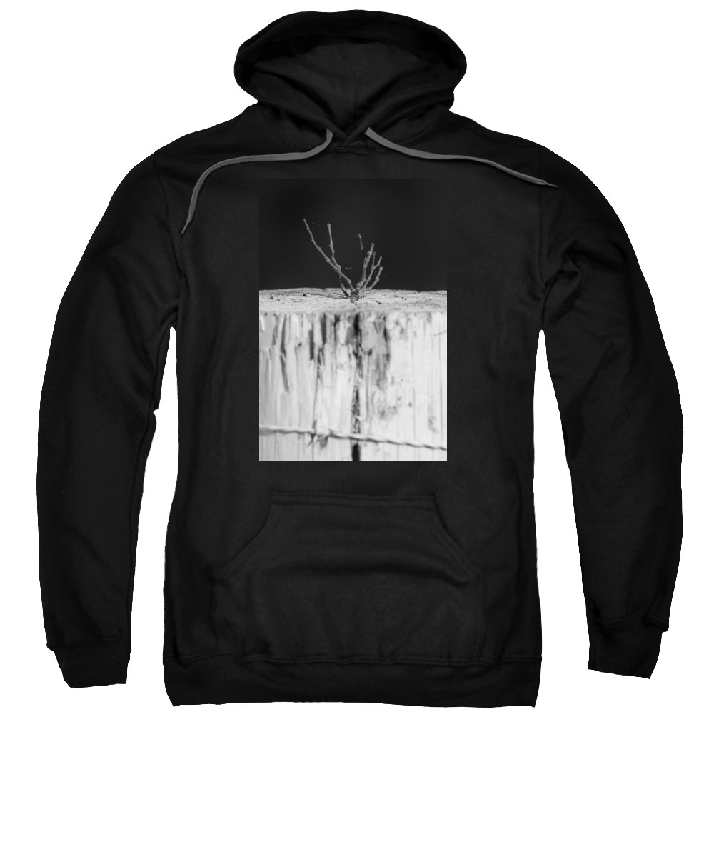 Black White Sweatshirt featuring the photograph Life by Alice Mary Herden