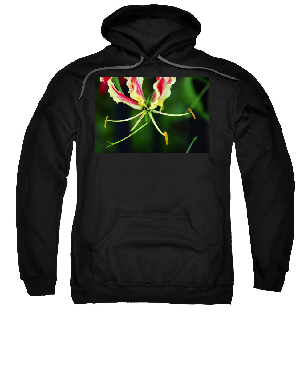Lilly Sweatshirt featuring the photograph Lilly by Susanne Van Hulst