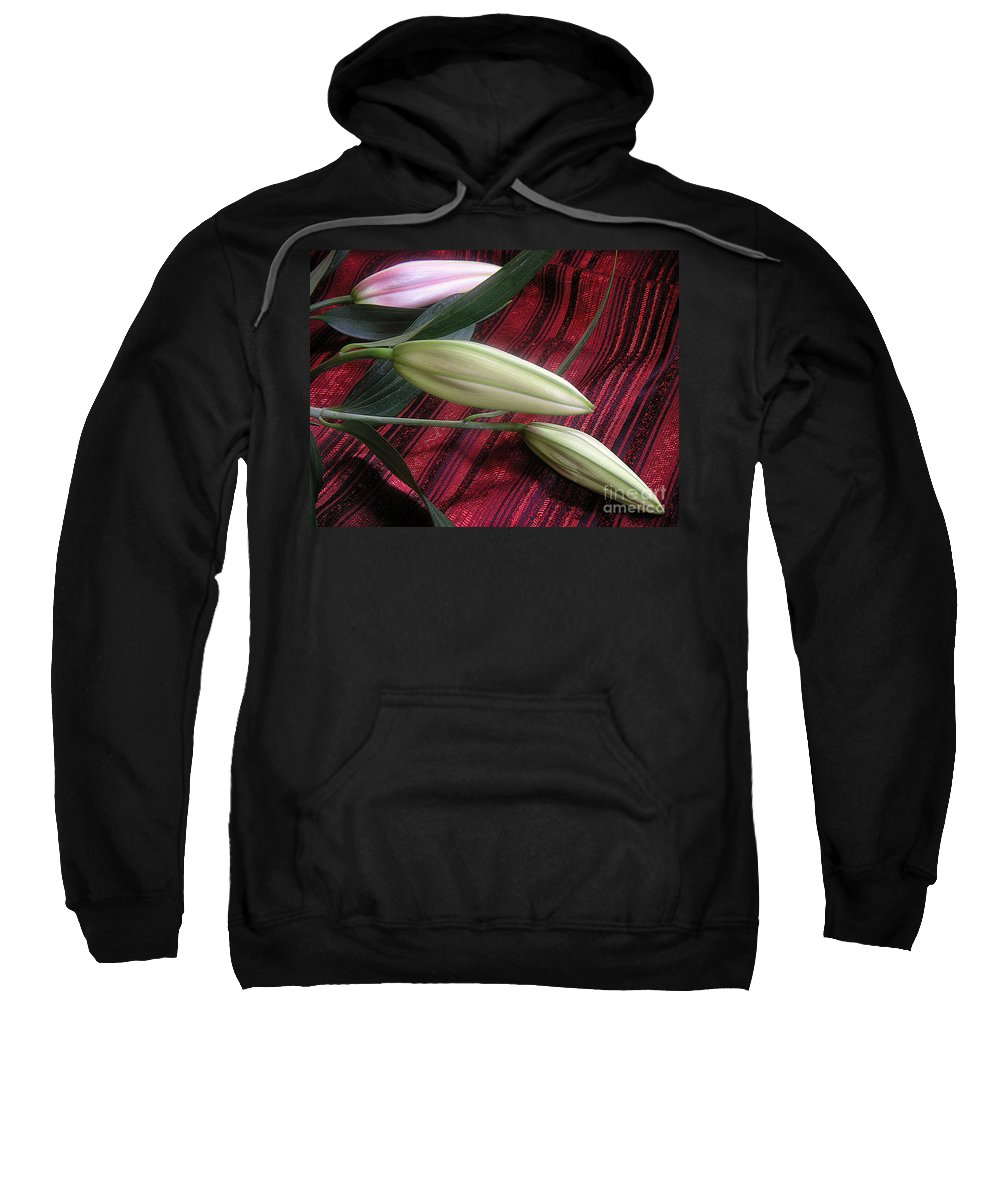 Nature Sweatshirt featuring the photograph Lily Stem On Red Brocade by Lucyna A M Green
