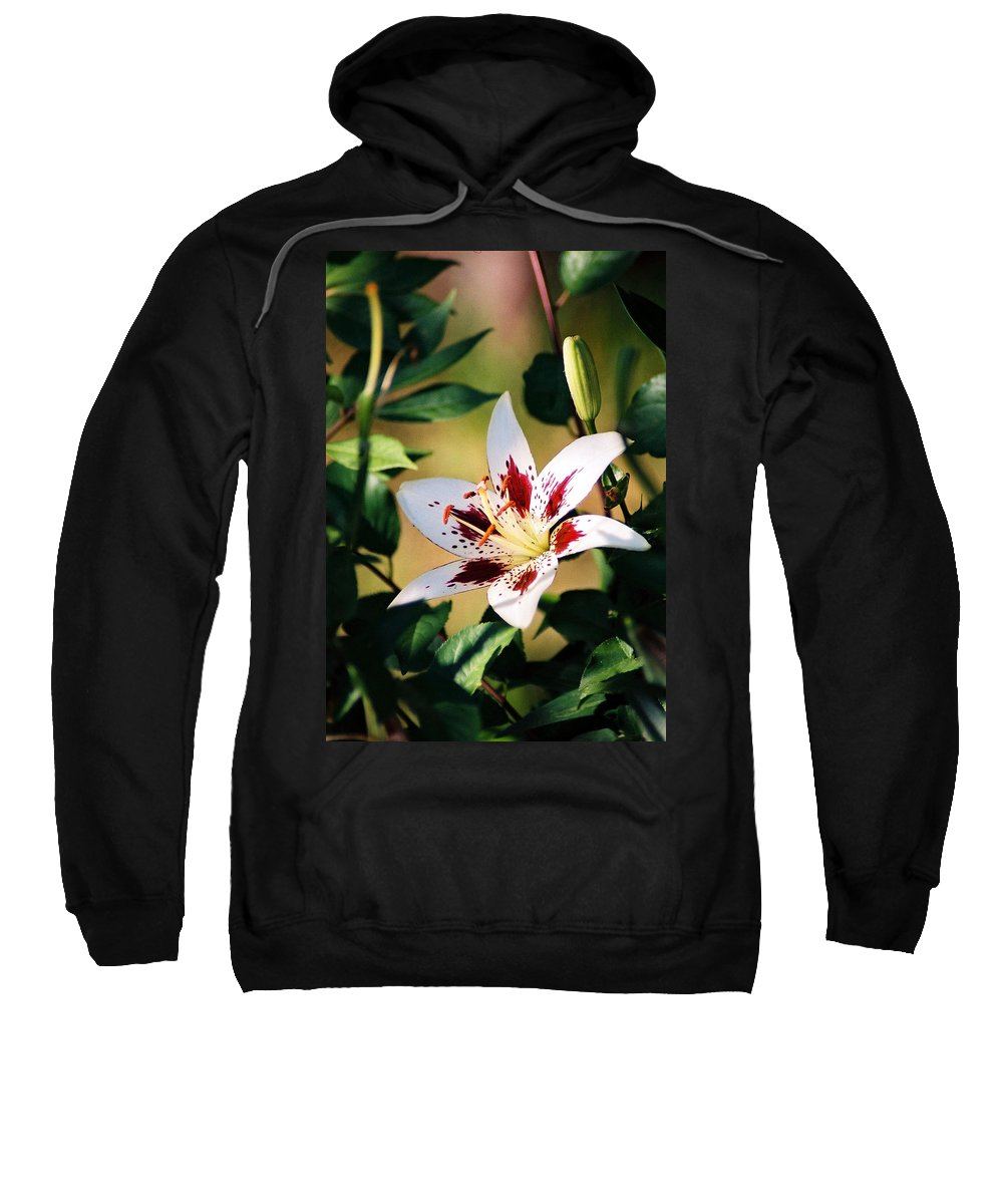 Flower Sweatshirt featuring the photograph Lily by Steve Karol