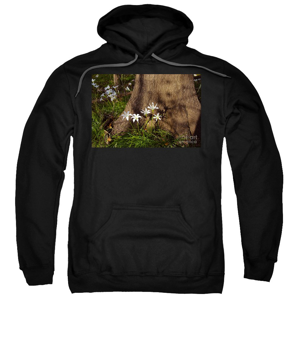 Atamasco Sweatshirt featuring the photograph Lily's Atamasco by David Lee Thompson