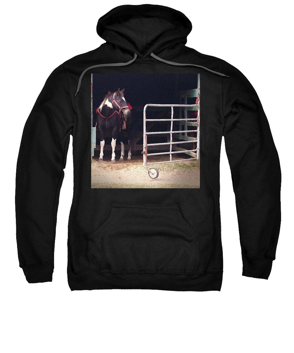 Horse Sweatshirt featuring the digital art Listening For My Turn by Kim Henderson