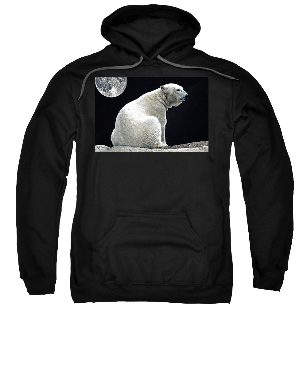 Polar Bear Sweatshirt featuring the photograph Lonely by DJ Florek