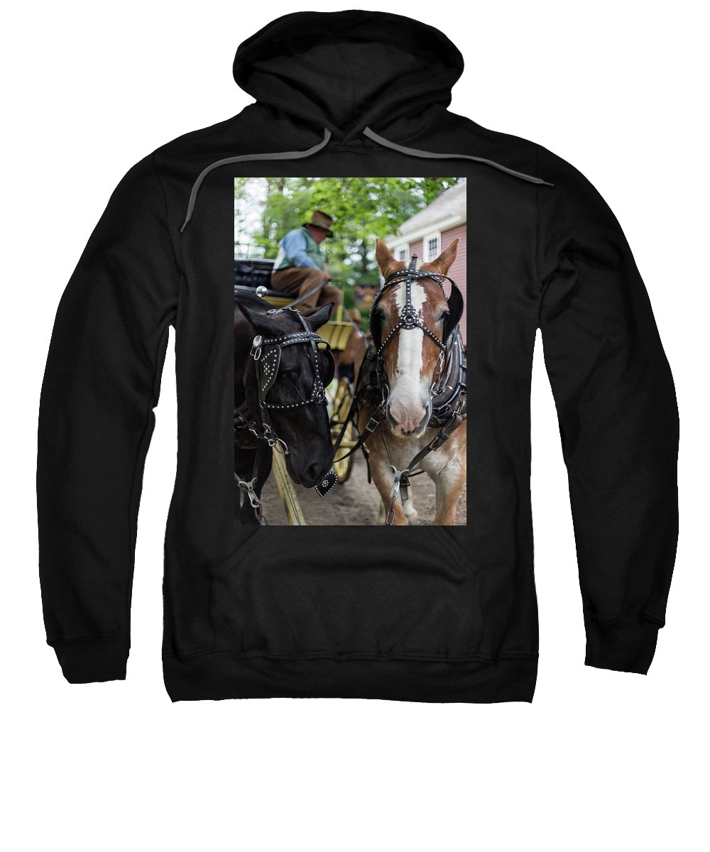 Old Sturbridge Village Sweatshirt featuring the photograph Look At The Camera by Bruce Coulter