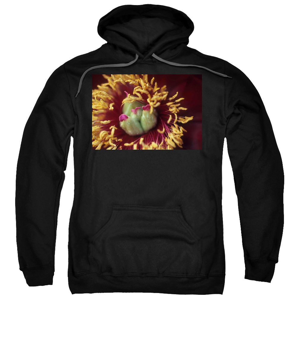 Flower Sweatshirt featuring the photograph Look Closely by Laurie Paci