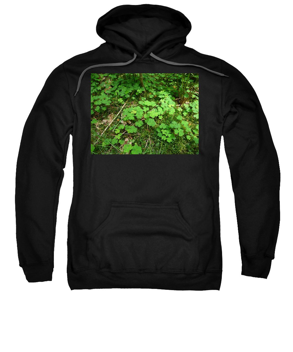 Clover Sweatshirt featuring the photograph Looking For A Four-leaf Clover by Valerie Ornstein