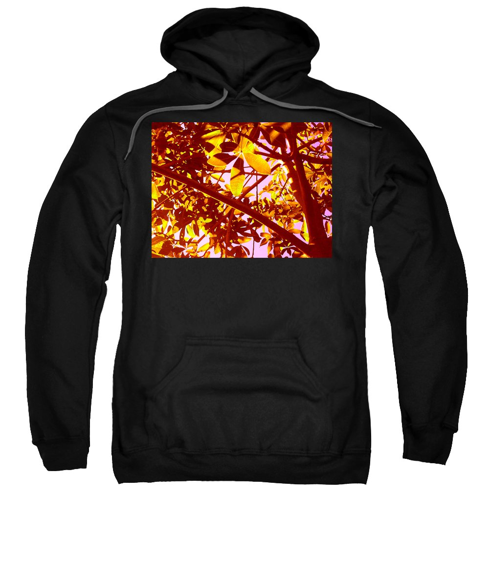 Garden Sweatshirt featuring the painting Looking Through Tree Leaves 2 by Amy Vangsgard