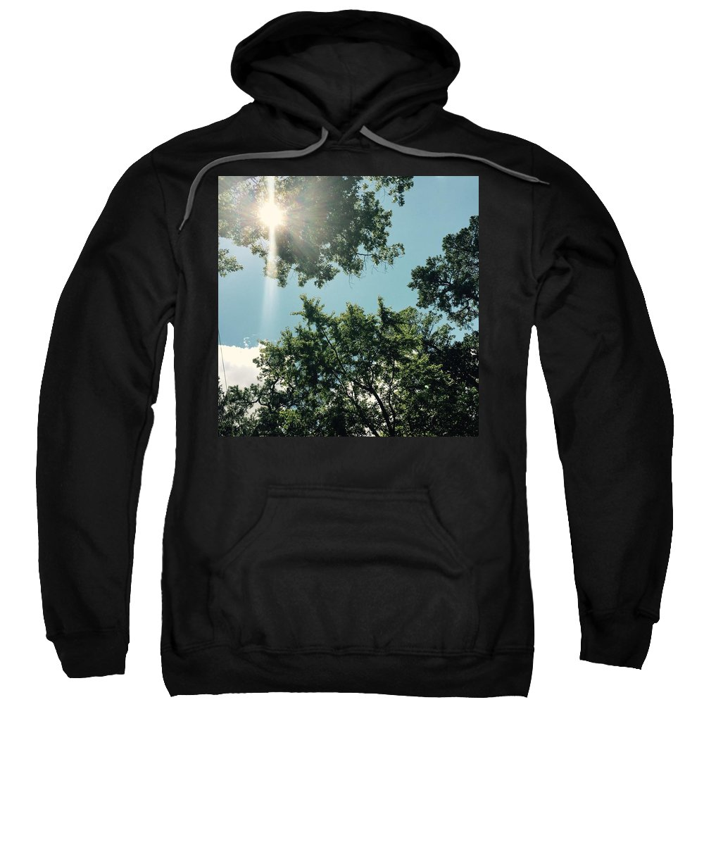 Trees Sweatshirt featuring the photograph Looking Up by Nicole Prohaska