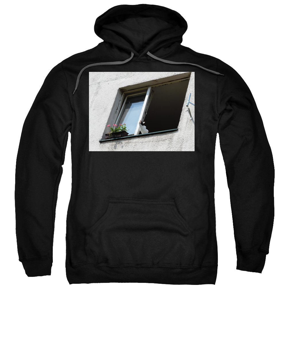 Cat Sweatshirt featuring the photograph Looking Up by Valerie Ornstein