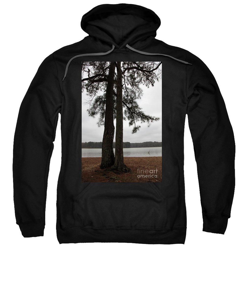 Tree Sweatshirt featuring the photograph Loving Pair by Amanda Barcon