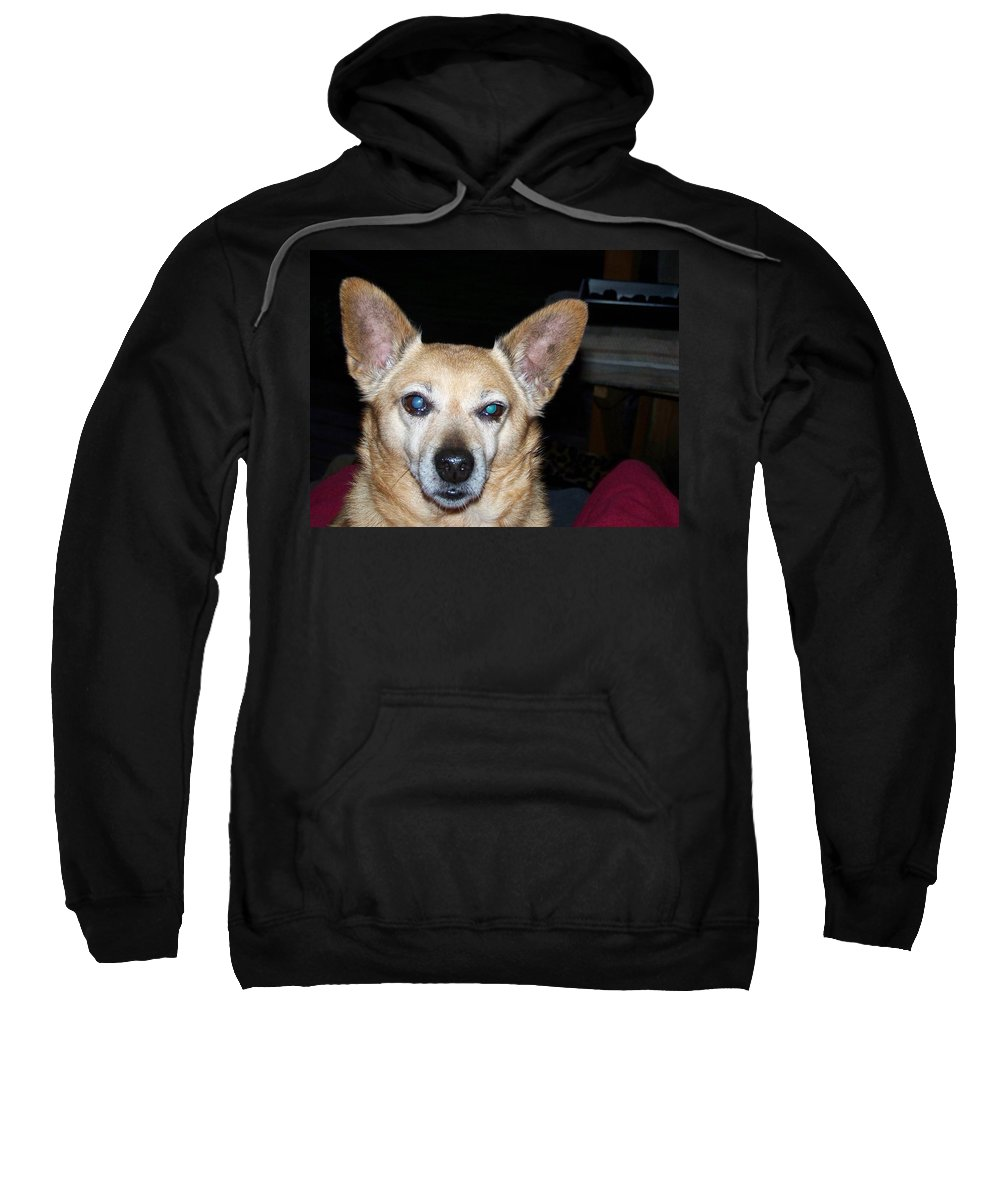 Digital Artwork Sweatshirt featuring the photograph Loyalty by Laurie Kidd