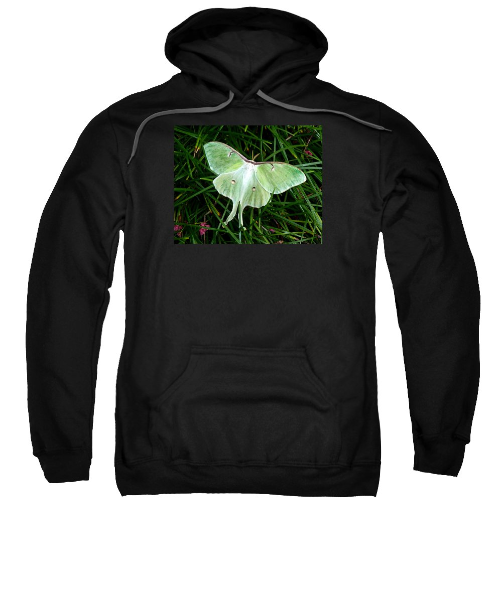 Luna Sweatshirt featuring the photograph Luna Mission Accomplished by Carla Parris