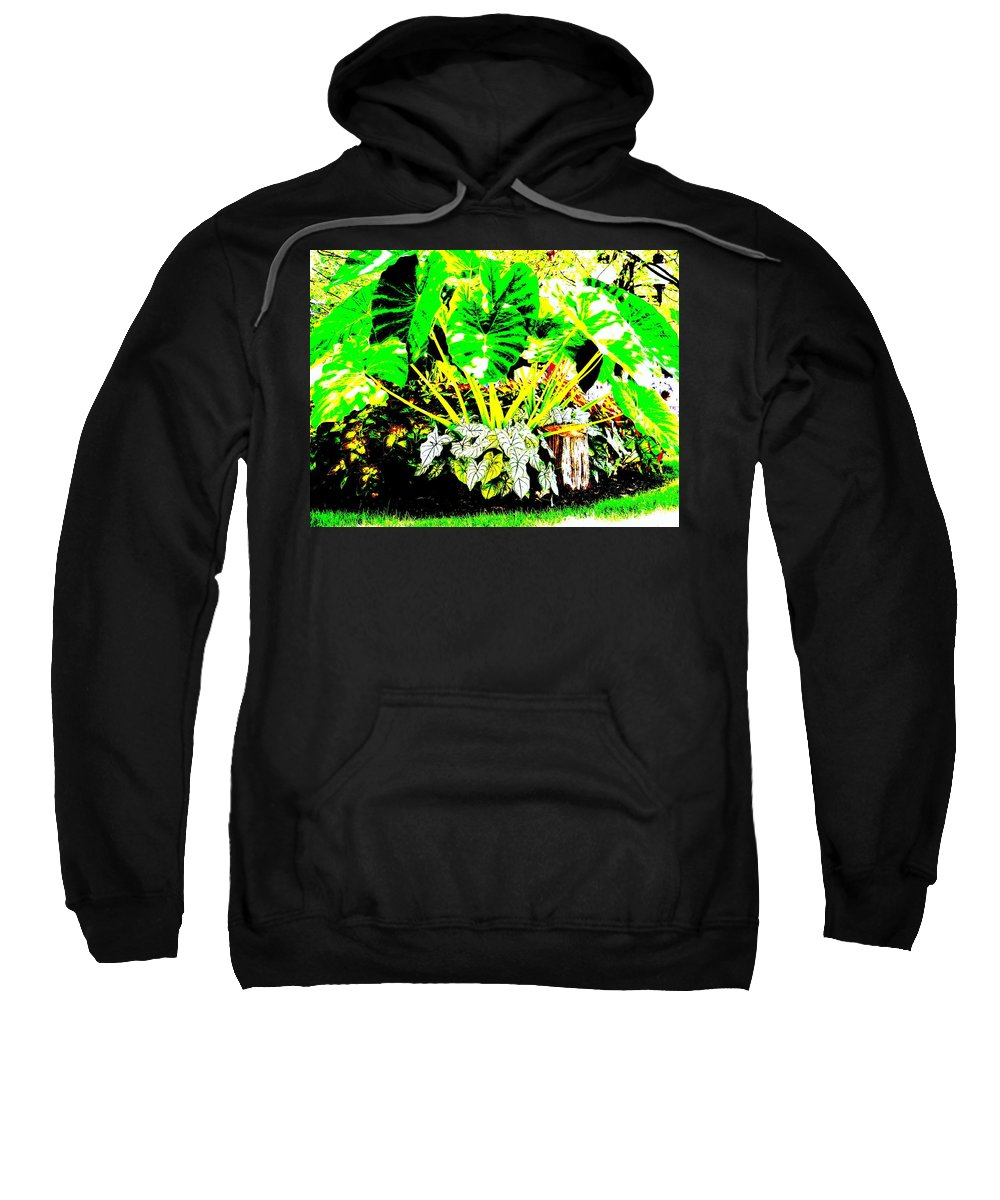 Plants Sweatshirt featuring the photograph Lush Garden by Ed Smith