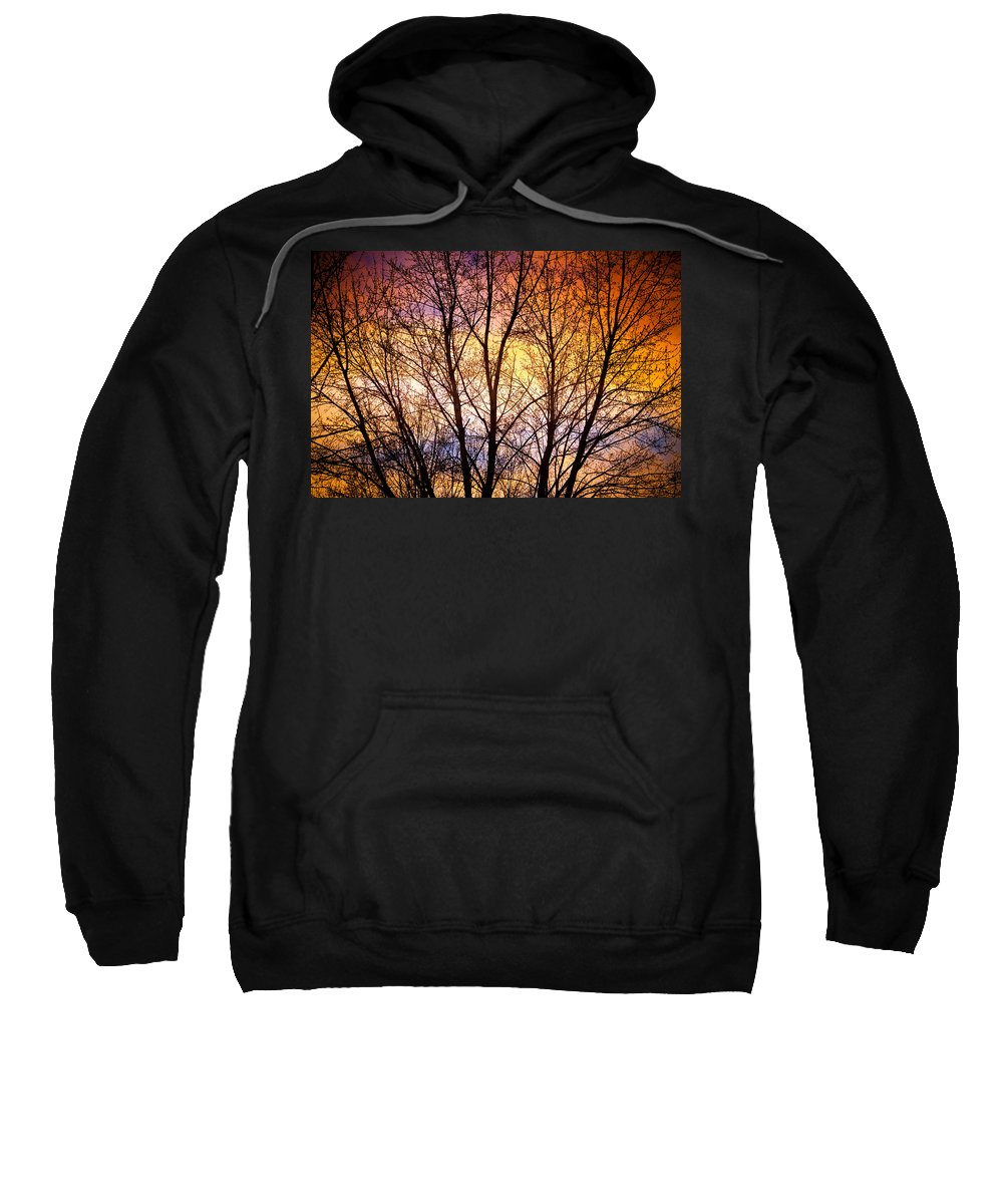 Silhouette Sweatshirt featuring the photograph Magical Colorful Sunset Tree Silhouette by James BO Insogna