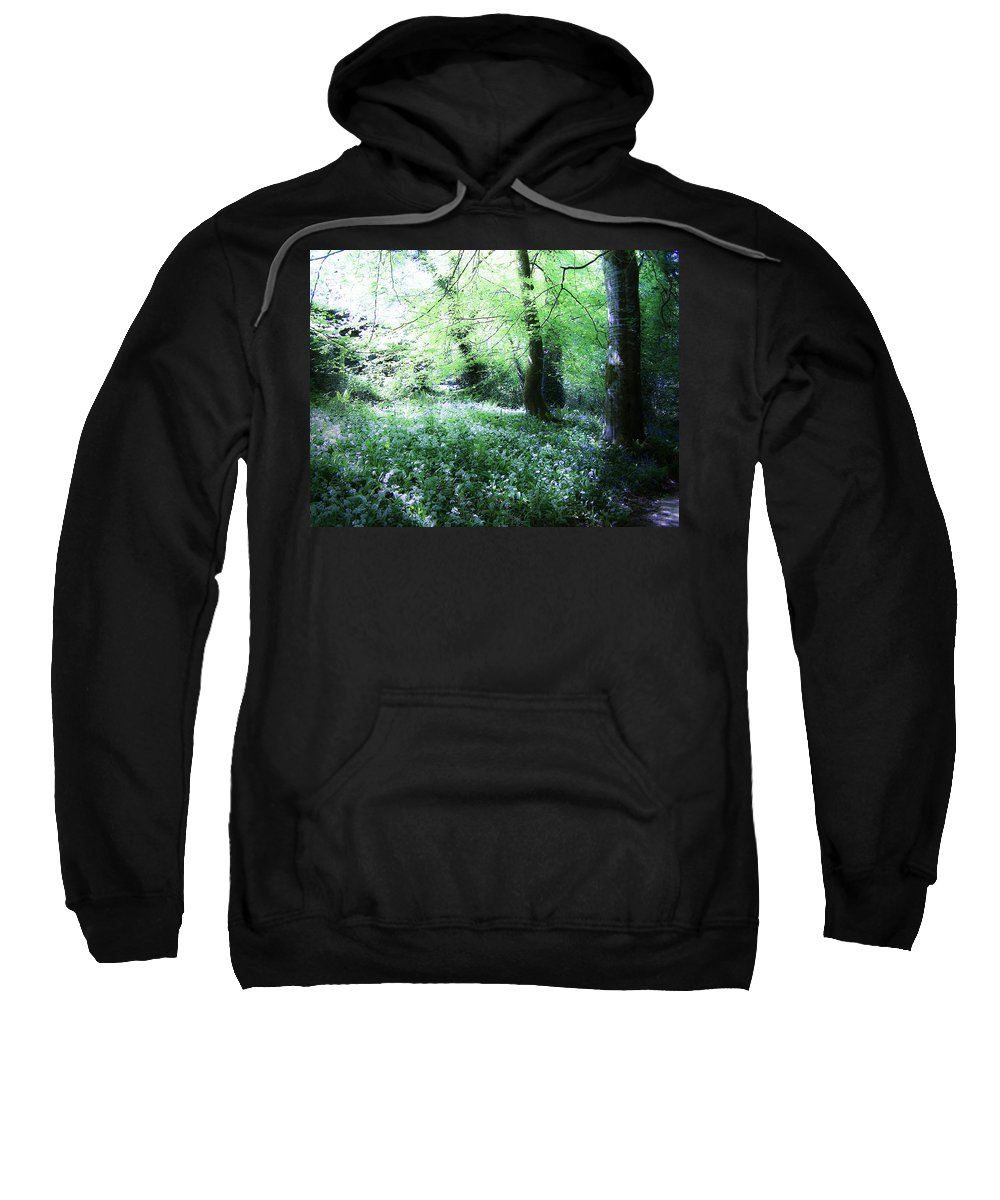 Irish Sweatshirt featuring the photograph Magical Forest At Blarney Castle Ireland by Teresa Mucha