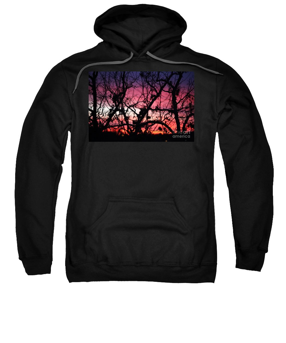 Sunset Sweatshirt featuring the photograph Magnificent Sunset And Trees by Nadine Rippelmeyer