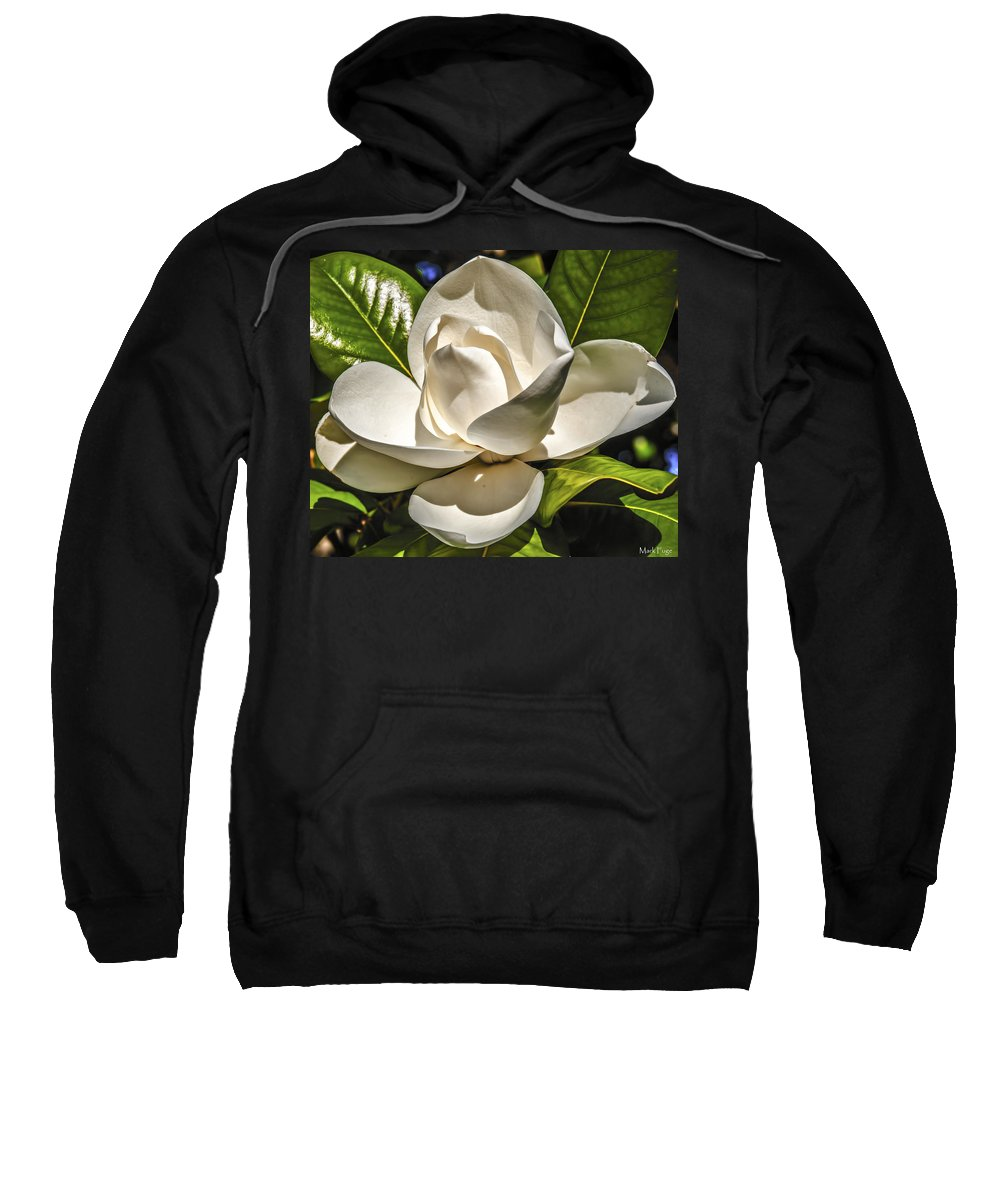 Flower; Magnolia; Magnolia Flower; Single Blossom; Sweatshirt featuring the photograph Magnolia Blossom 4 by Mark Fuge