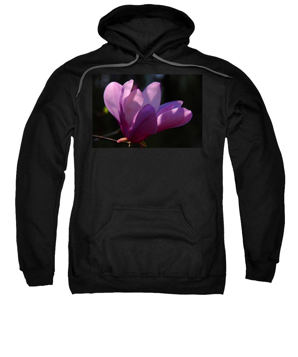 Flowers Sweatshirt featuring the photograph Magnolia Flower by Susanne Van Hulst