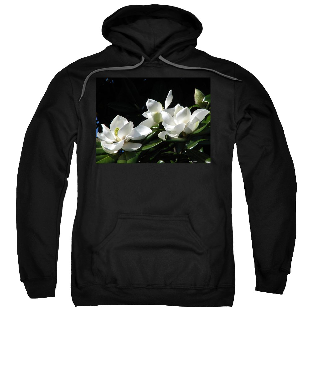 Patzer Sweatshirt featuring the photograph Magnolia by Greg Patzer