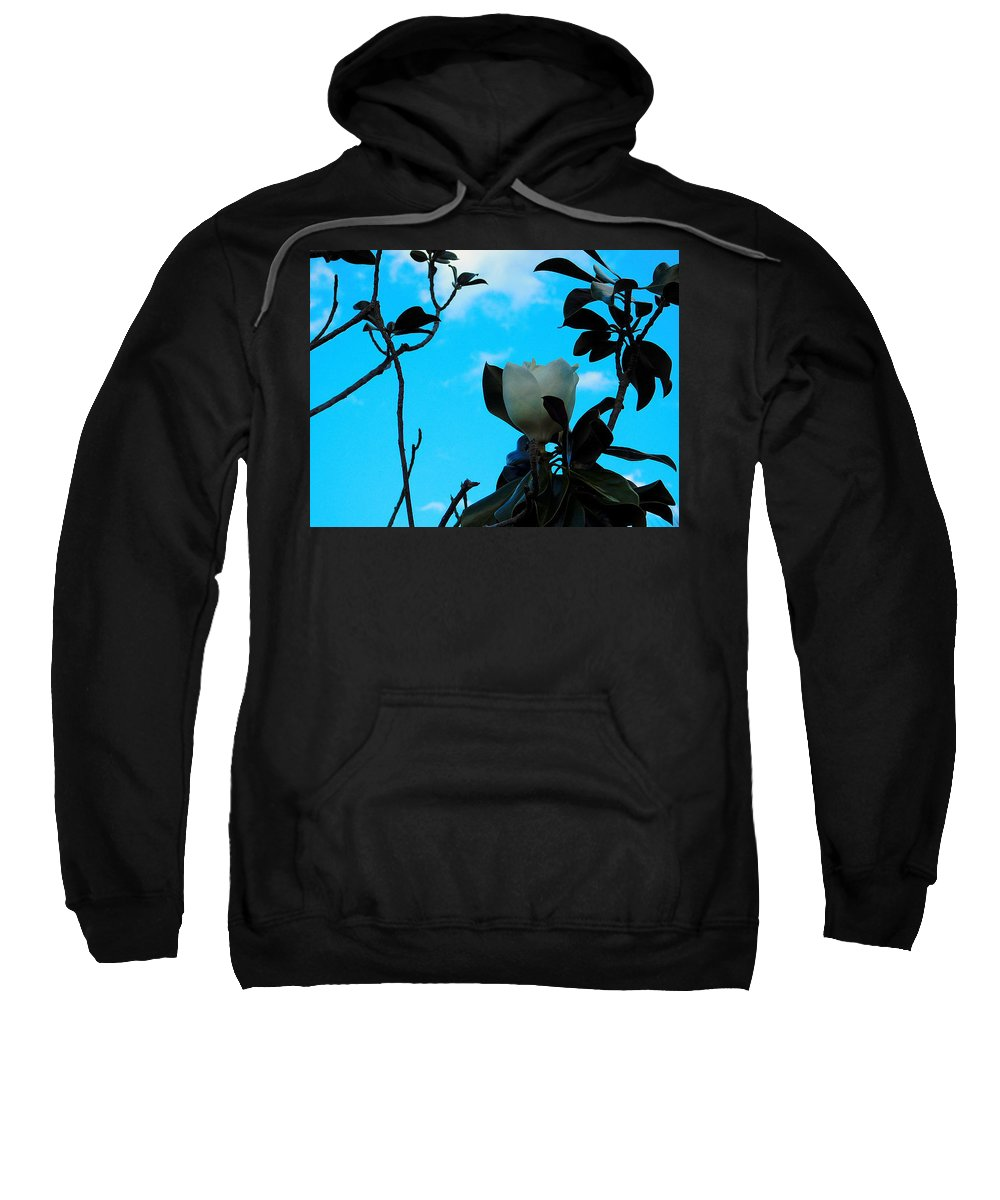 Sweatshirt featuring the photograph Magnolia by Hayley Ann