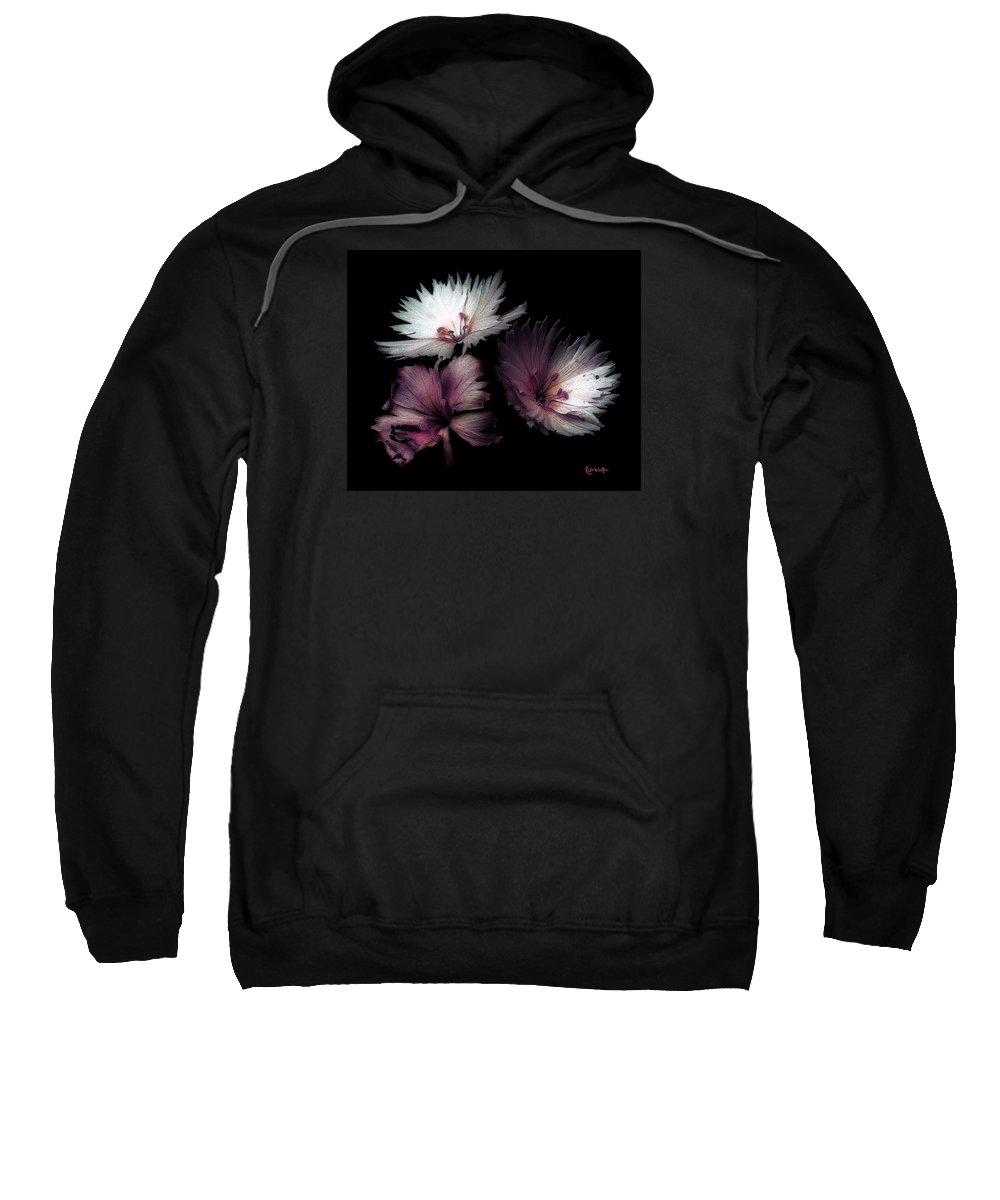 Dianthus Sweatshirt featuring the painting Maiden Mother Crone by RC deWinter