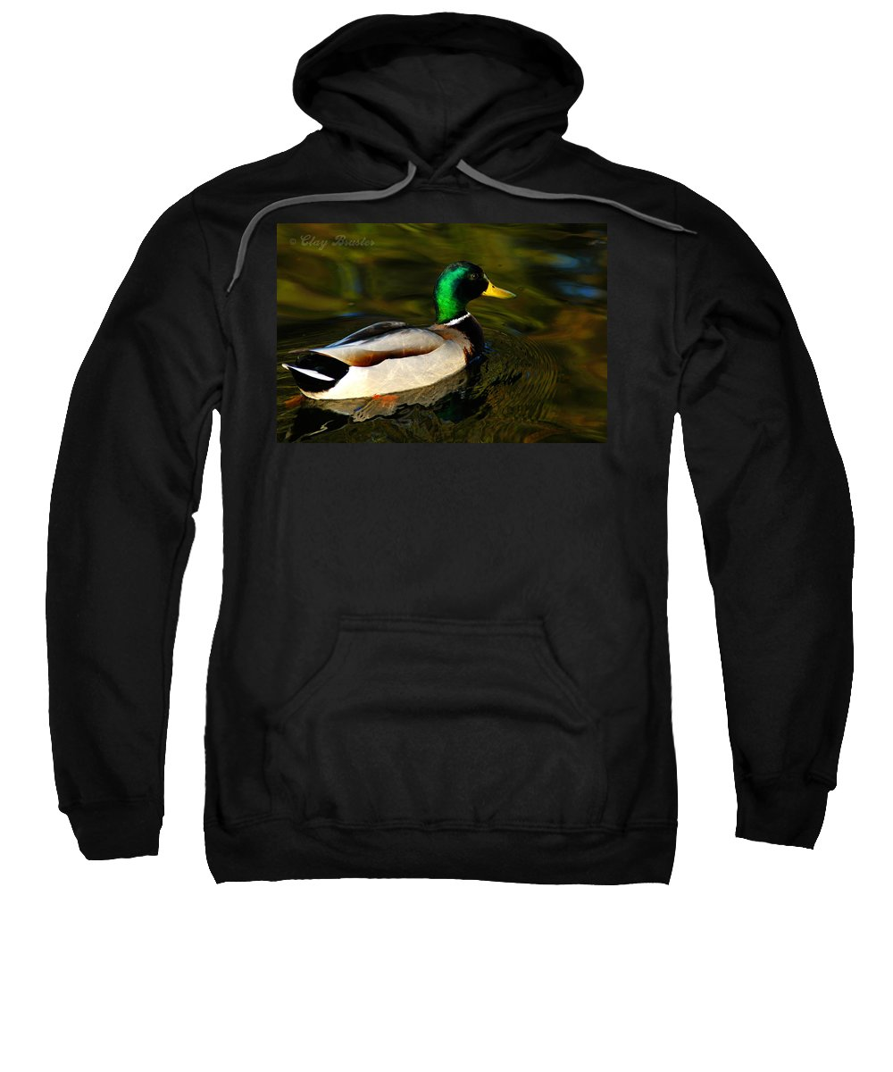 Clay Sweatshirt featuring the photograph Mallard Green by Clayton Bruster
