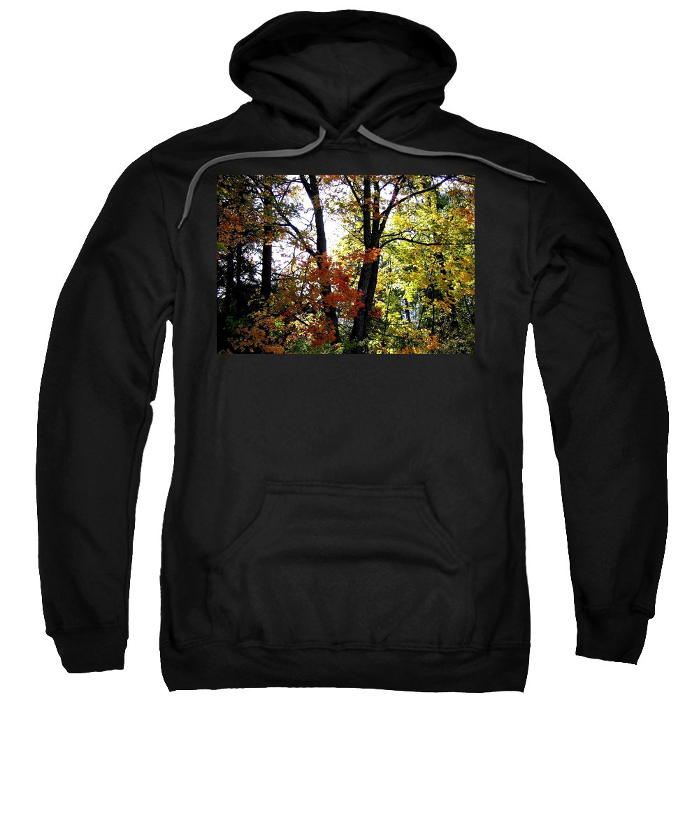 Autumn Sweatshirt featuring the photograph Maple Mania 16 by Will Borden