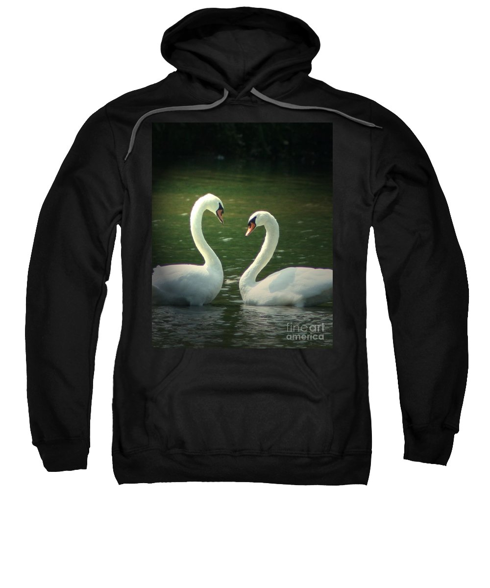 Nature Wildlife Ohio Waterscape Landscape Swans Lake Pond Sweatshirt featuring the photograph Mates For Life by Dawn Downour