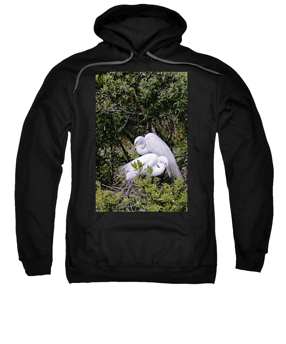 Bird Sweatshirt featuring the photograph Mating Season by Phill Doherty