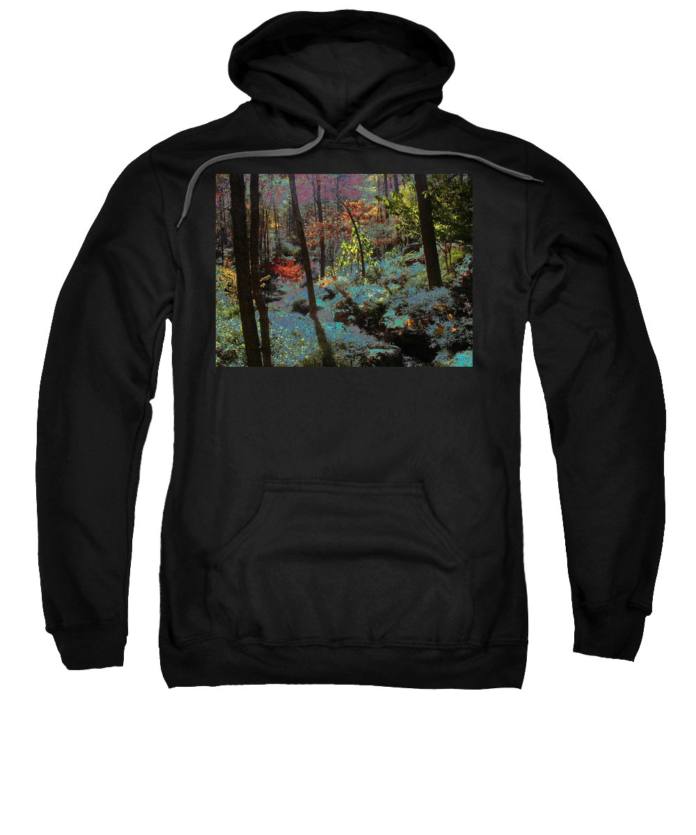 Maxfield Parrish Sweatshirt featuring the photograph Maxfield Parrish Moment by Anne Cameron Cutri