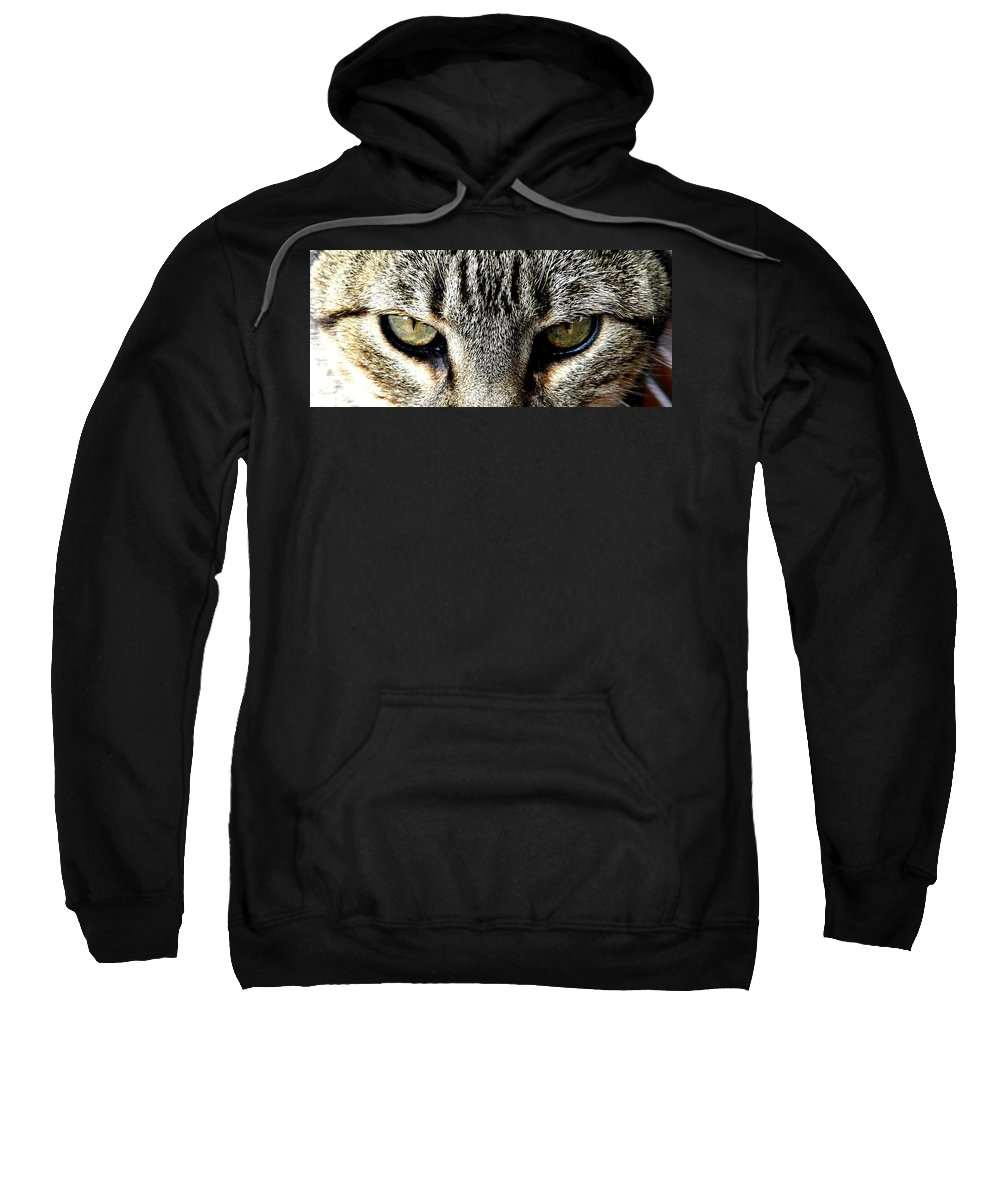 Cat Sweatshirt featuring the photograph Me...dangerous...never. by Valerie Ornstein