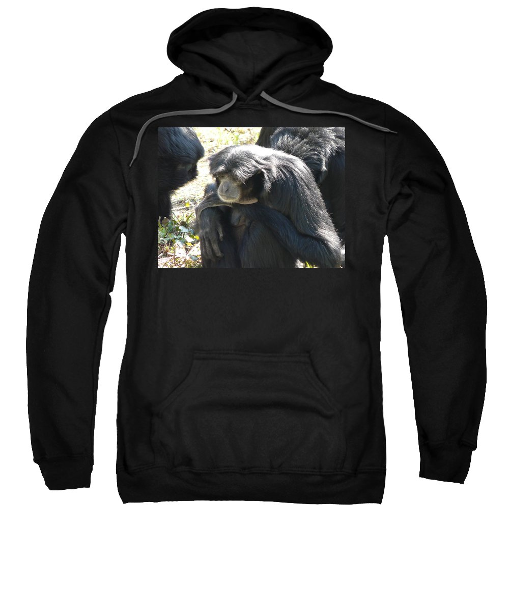 Animal Sweatshirt featuring the photograph Melancholy by Valerie Ornstein