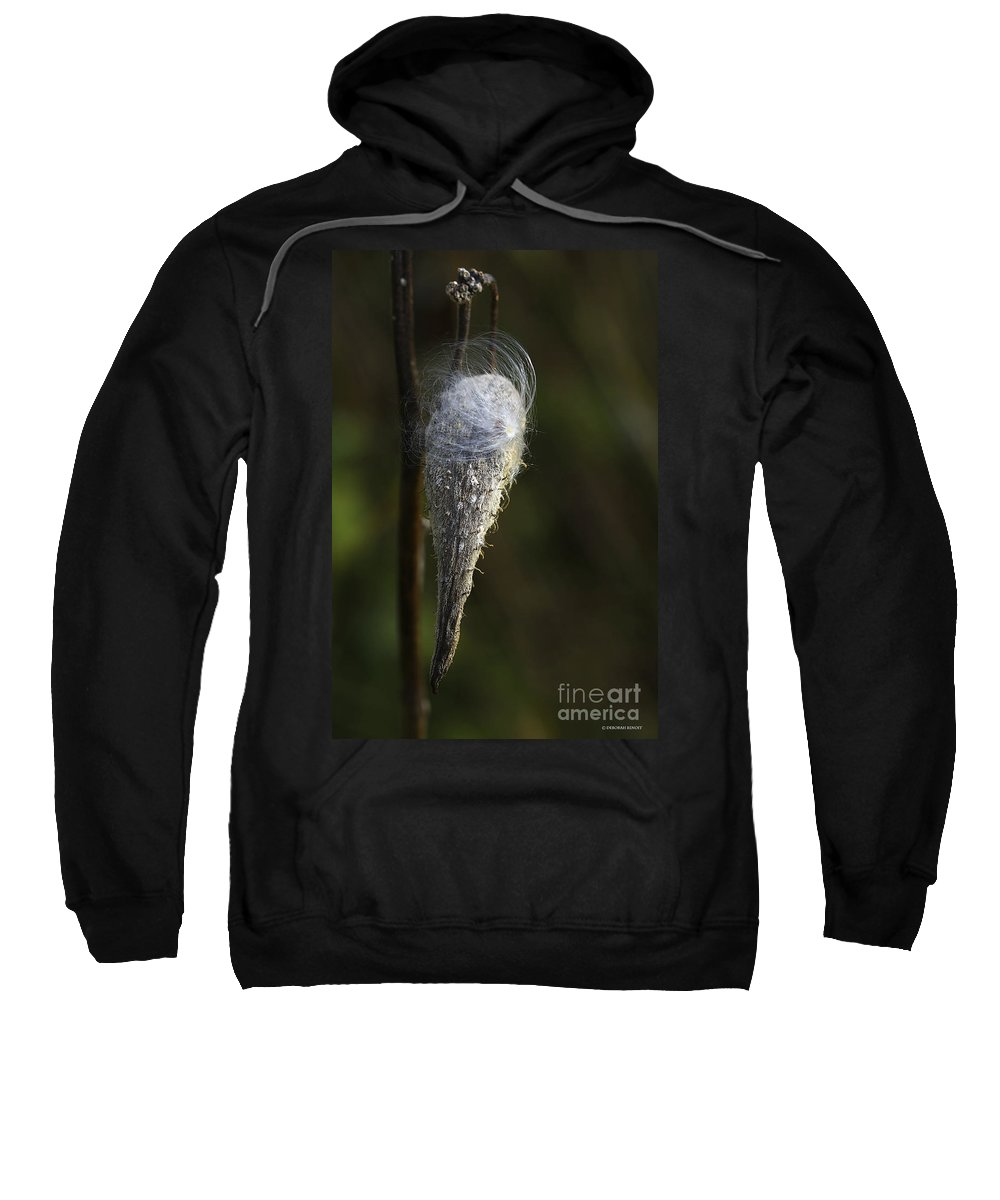 Milkweed Sweatshirt featuring the photograph Milkweed In Autumn by Deborah Benoit