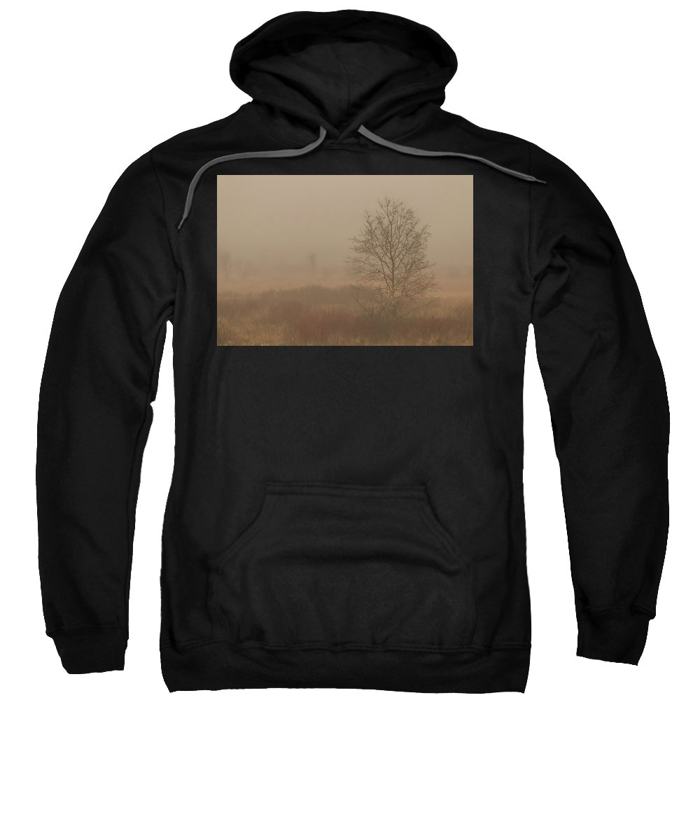 Mist Sweatshirt featuring the photograph Misty Late Fall Landscape by Patti Deters