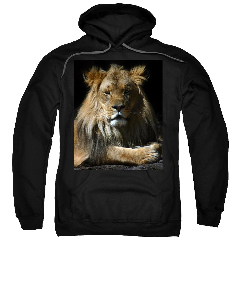 Lion Sweatshirt featuring the photograph Mohawk by Anthony Jones