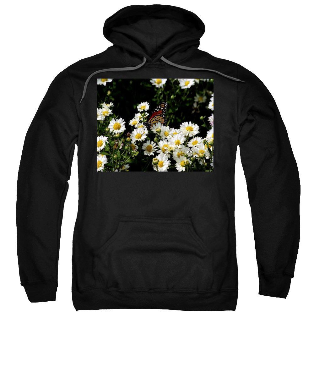 Arthropod Sweatshirt featuring the photograph Monarch Butterfly by Gary Adkins