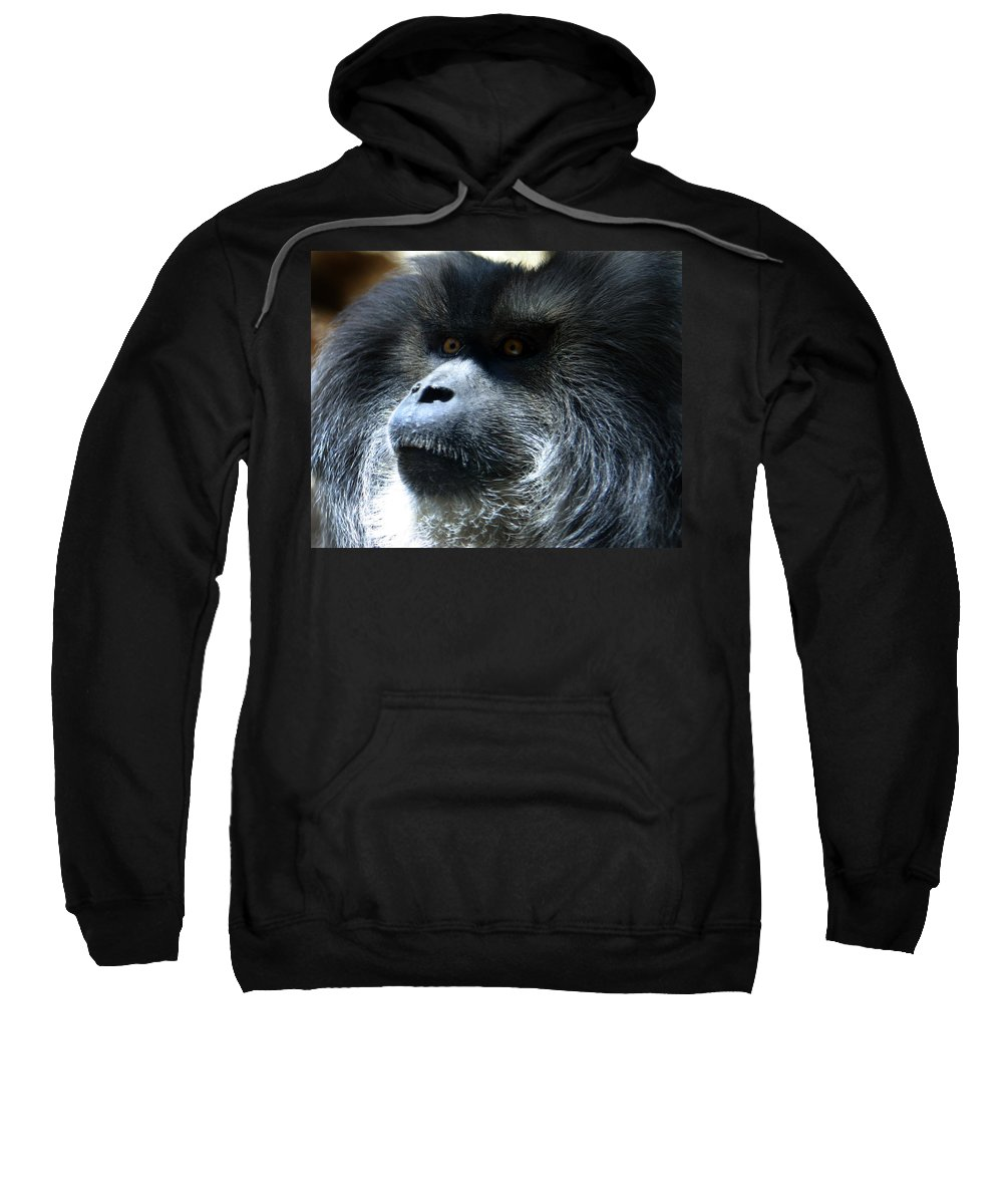 Monkey Sweatshirt featuring the photograph Monkey Stare by Anthony Jones