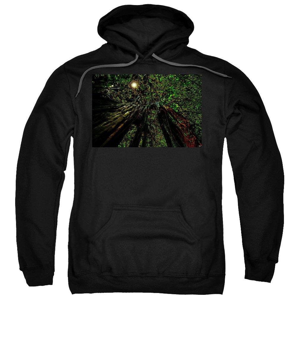 Art Sweatshirt featuring the painting Moon Light by David Lee Thompson