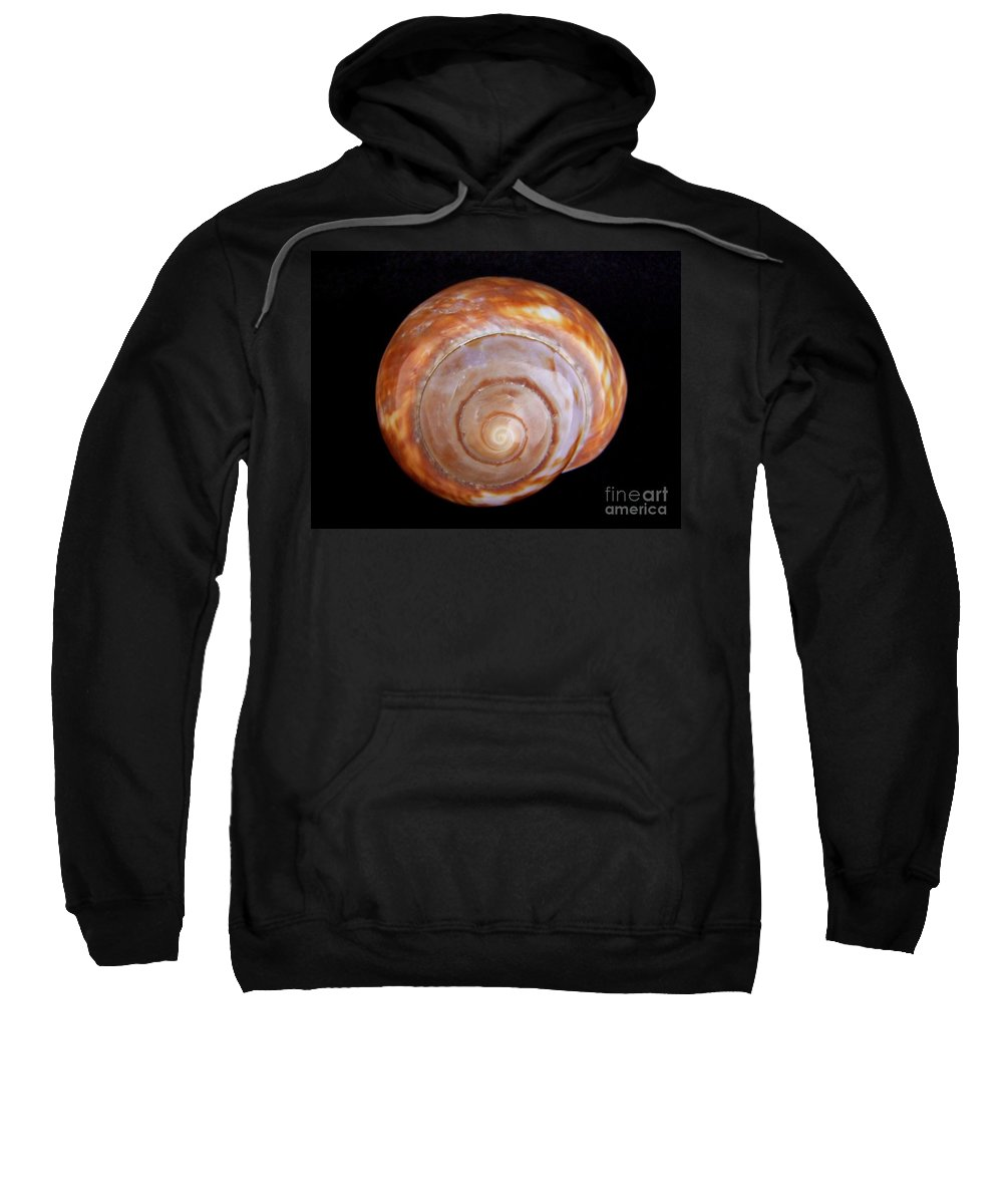 Mary Deal Sweatshirt featuring the photograph Moon Shell by Mary Deal