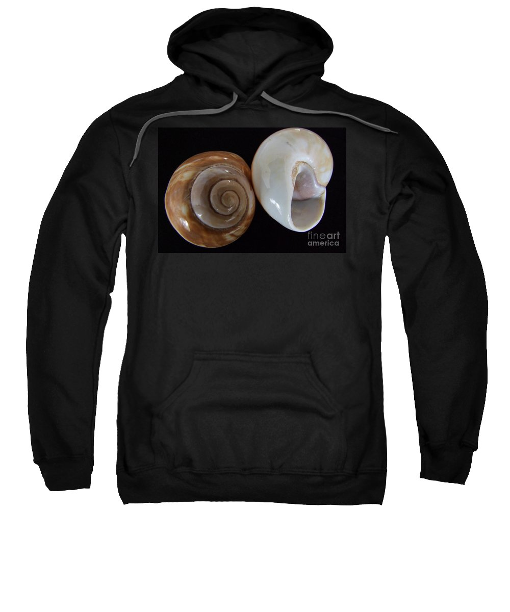 Mary Deal Sweatshirt featuring the photograph Moon Shells by Mary Deal