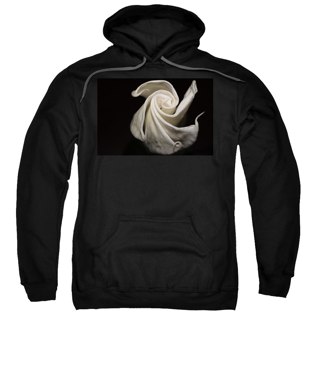 Moonflower Sweatshirt featuring the photograph Moonflower by Jill Smith