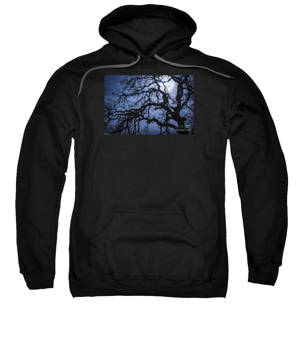 Moonlight And Oak Tree Sweatshirt featuring the photograph Moonlight And Oak Tree by Mitch Shindelbower