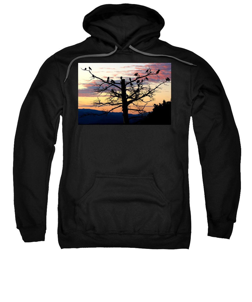 Bird Sweatshirt featuring the photograph Morning In The Rockies by Ben Zell