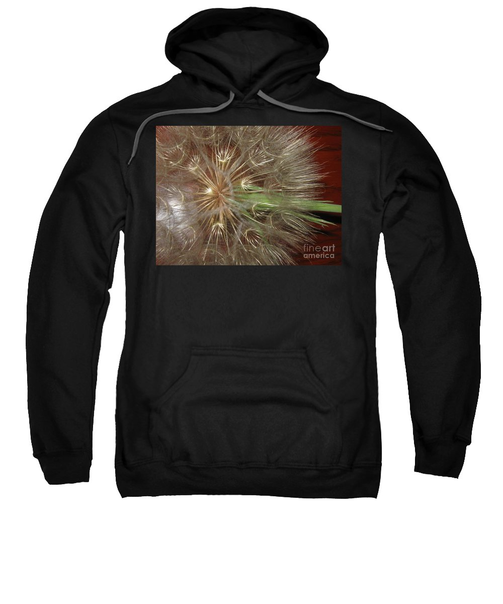 Star Sweatshirt featuring the photograph Morning Star by Marie Neder