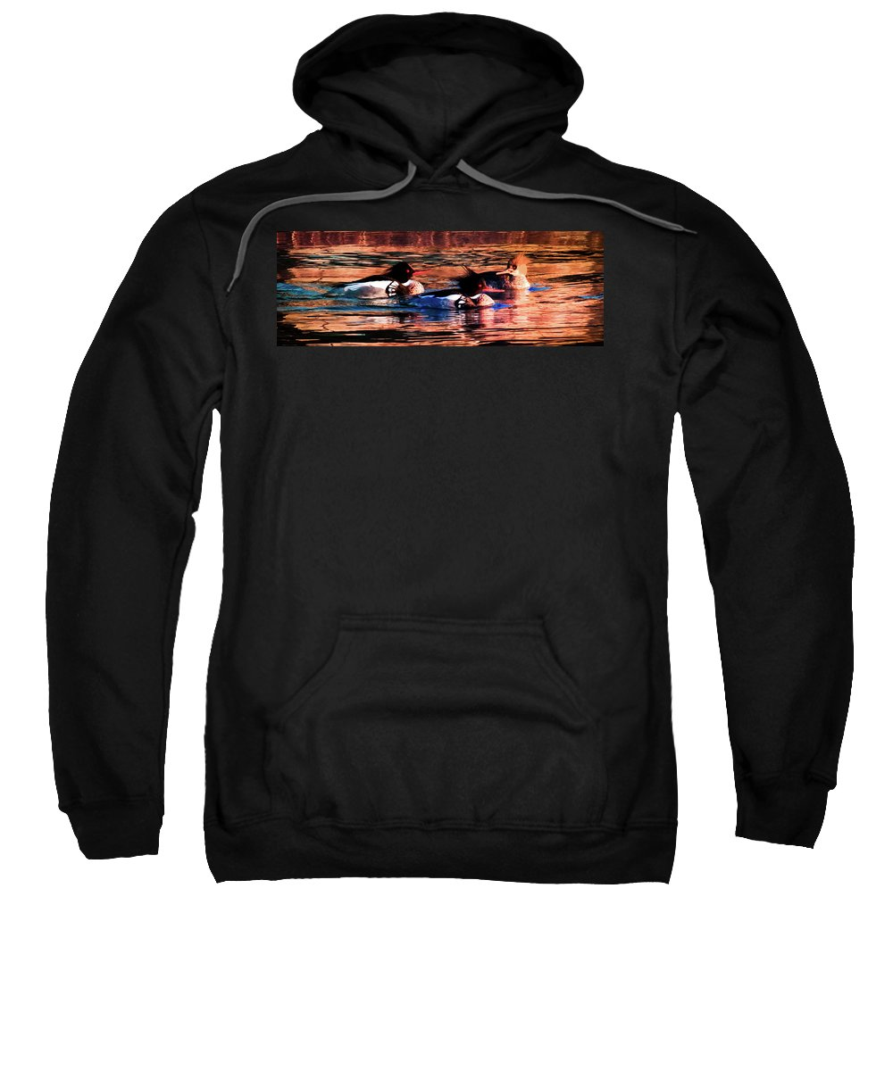 Wild Ducks Sweatshirt featuring the photograph Mornings Of Gold by Karen Wiles