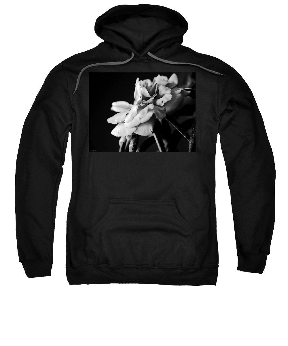 Lauren Radke Sweatshirt featuring the photograph Moss Rose I by Lauren Radke