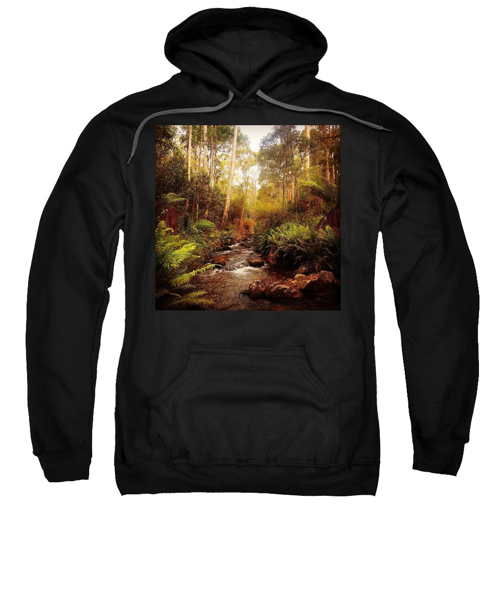 Nature Sweatshirt featuring the pyrography Mountain Creek by Glen Johnson