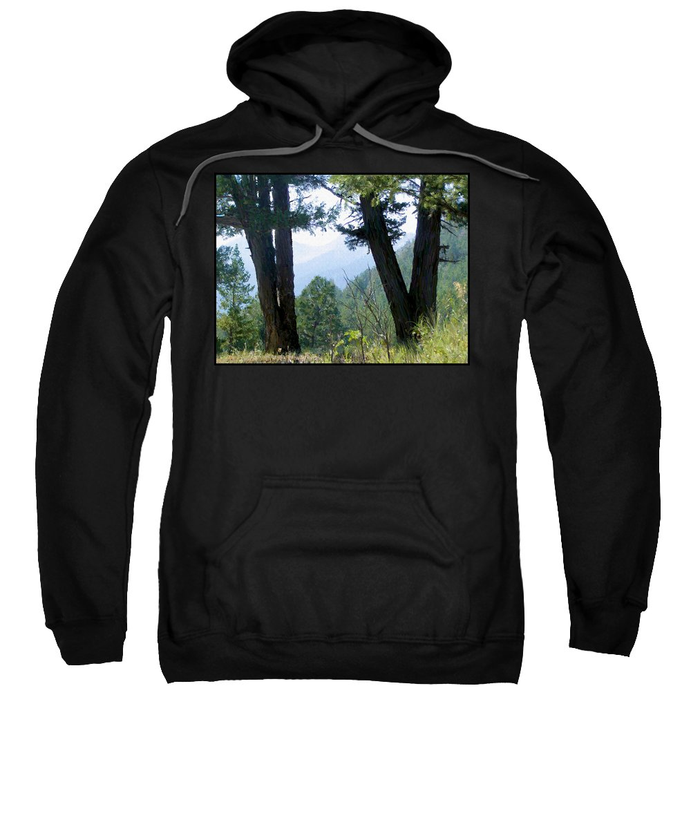 Digital Painting Sweatshirt featuring the painting Mountain View by Susan Kinney